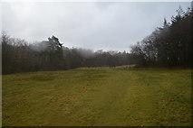 SS8116 : North Devon : Grassy Field by Lewis Clarke
