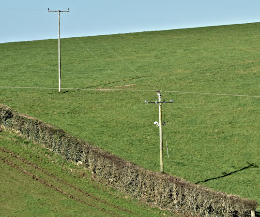 Poles and power lines, Ballyalton, Newtownards (March 2017)