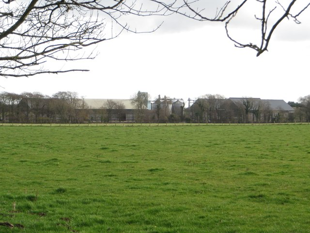 Grass field at Longhirst