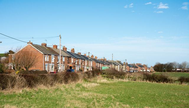 Terraced housing on Twizell Lane