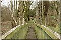 NS2701 : Footbridge near the Old Castle by Billy McCrorie