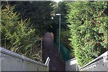 TL1314 : Footbridge steps by Robert Eva
