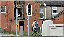J3674 : New pedestrian lights, Mersey Street, Belfast (March 2017) by Albert Bridge