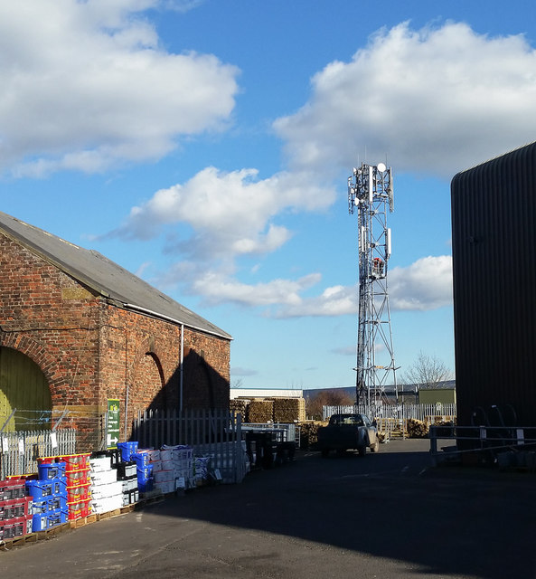 Phone Mast behind Mole Valley Stores