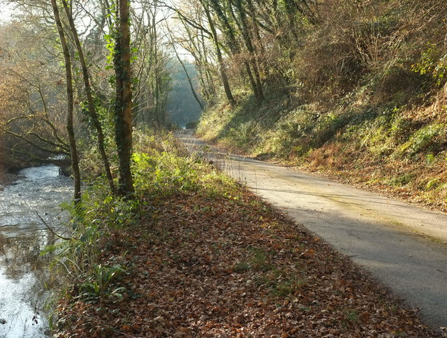 Lane by the Woolleigh Brook