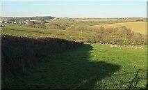 SS5318 : Farmland, Kingscott by Derek Harper