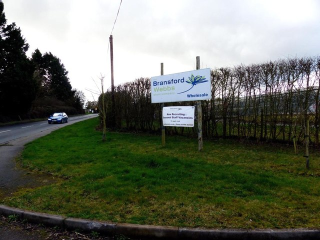 Bransford Webb Plant Company