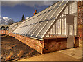 SJ8383 : Restored Greenhouse at Quarry Bank Mill by David Dixon