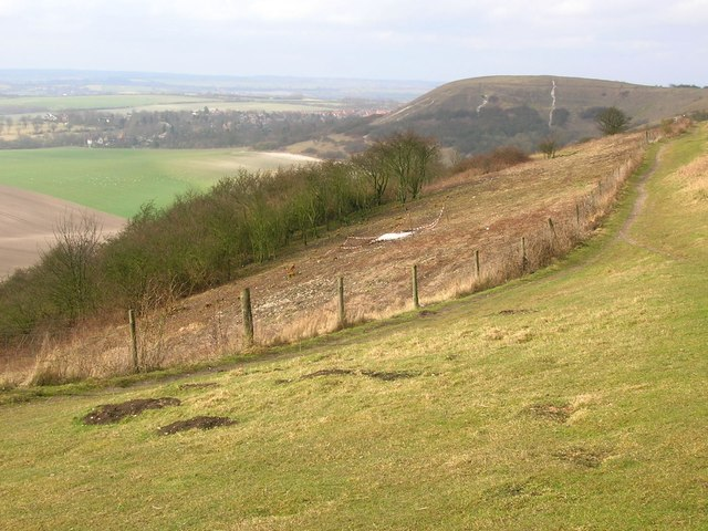 Scrub clearance on Dunstable Downs