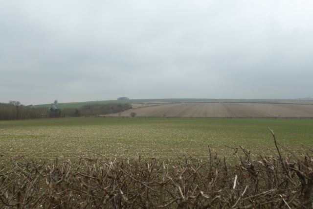 Over the hedgerow