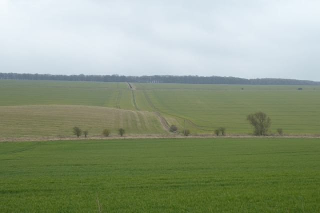 Farmland south of Low Road