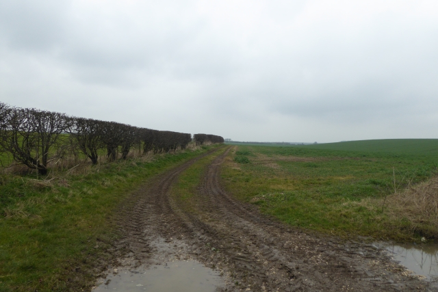 Bridleway to Wold Road