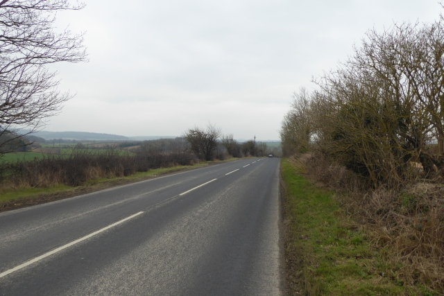 Road on Gallows Hill
