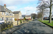 SE1321 : Houses on the NW side of Crowtrees Lane, Rastrick by Humphrey Bolton