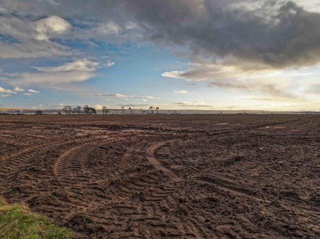 Recently ploughed field overlooking Nigg Bay