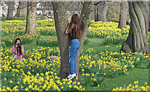 TQ2979 : A photographer and her subject in St James's Park by Free Man