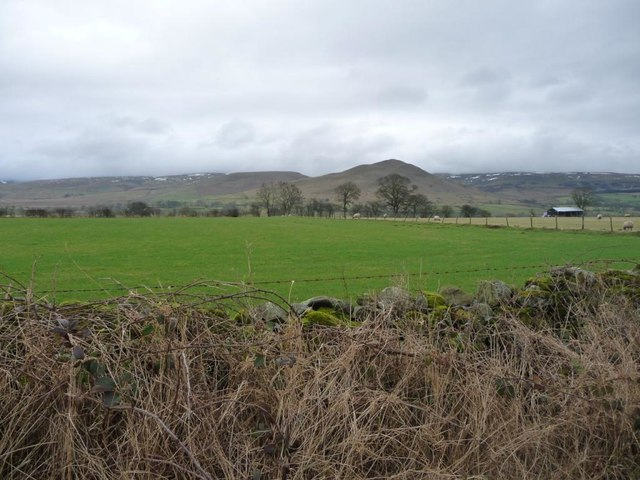 Farmland south of Newlands