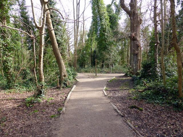 Footpath Junction in Hampden Park