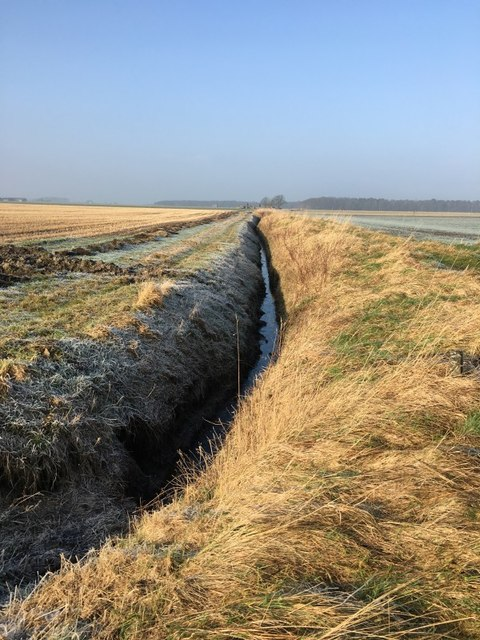 Ditch and fields