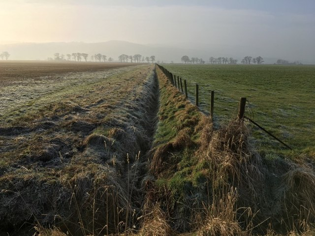 Fields and fence