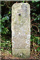SE1788 : Guide post/gatepost with double benchmarks by Roger Templeman