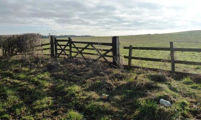Asymmetric field gates, south side, Greenless Lane