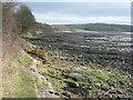 NT1683 : Dalgety Bay by M J Richardson
