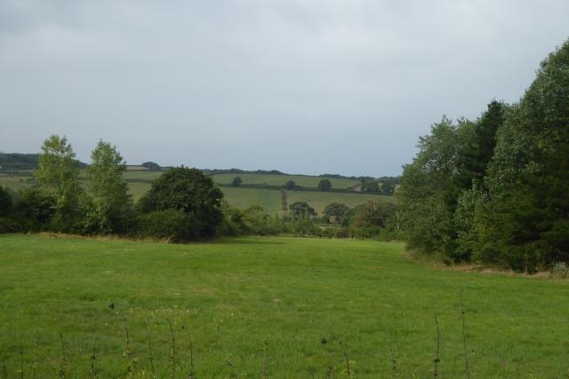 Fields on the outskirts of Gurnard