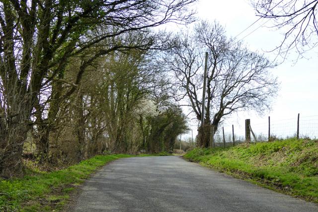 Harringe Lane