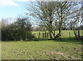 TL2731 : Gate on the footpath to the moat, Clothall by Humphrey Bolton
