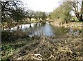 SE7843 : The  Basin  of  Bielby  Arm  Pocklington  Canal by Martin Dawes