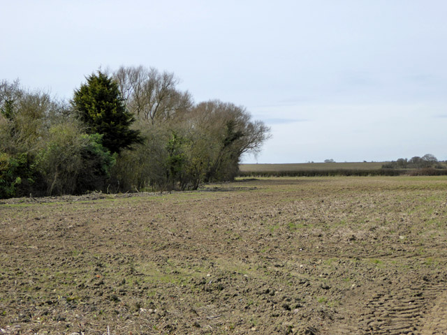 Brown field west of Calleywell Lane