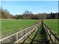 SU9368 : Footpath near Tetworth Hall by Des Blenkinsopp