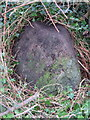 SH4937 : Boundary stone west of Criccieth by John S Turner