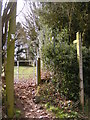 SJ8300 : Footpath Scene by Gordon Griffiths
