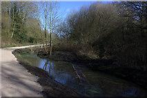 SP5174 : Nature reserve ponds by Robert Eva