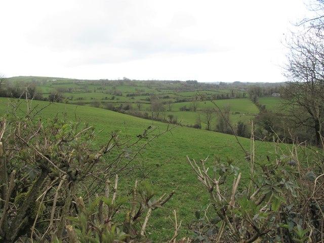Farm land West of the Carrowmannan Road