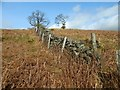 NS4674 : Fence and dry-stone wall by Lairich Rig