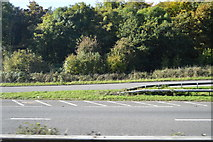 SX8578 : Slip road off A38 by N Chadwick