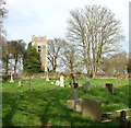 TG2219 : The churchyard of All Saints in Hainford by Evelyn Simak