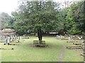 ST8477 : Castle Combe [15] - graveyard (1) by Michael Dibb