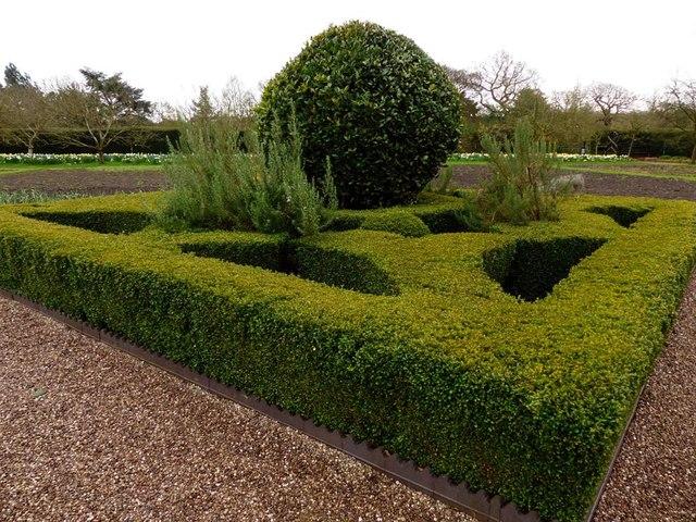 Topiary, Grappenhall Heys walled garden