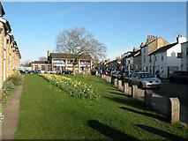 TL4658 : Spring in Norfolk Street by Keith Edkins