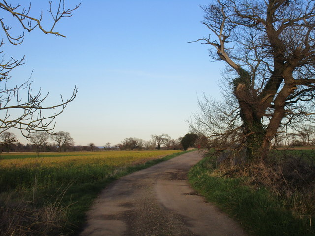 Bridleway to Langwith Lodge