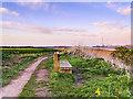 SJ4881 : Bench on the Coastal Path near Hale by David Dixon