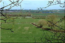 SP7289 : Farmland north of the Market Harborough Branch of the Grand Union Canal by Mat Fascione