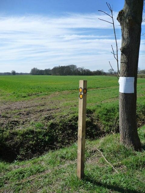 Footpath junction, north-east of Amington Hall Farm