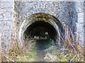 SK1473 : Limekiln portal by Dave Dunford