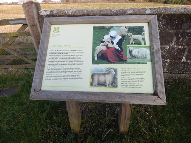 Lincoln Longwool sign