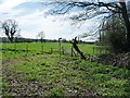 SK2305 : Diverted footpath, east of Amington Hall Farm by Christine Johnstone